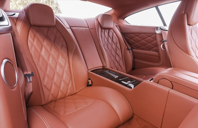 Car Leather