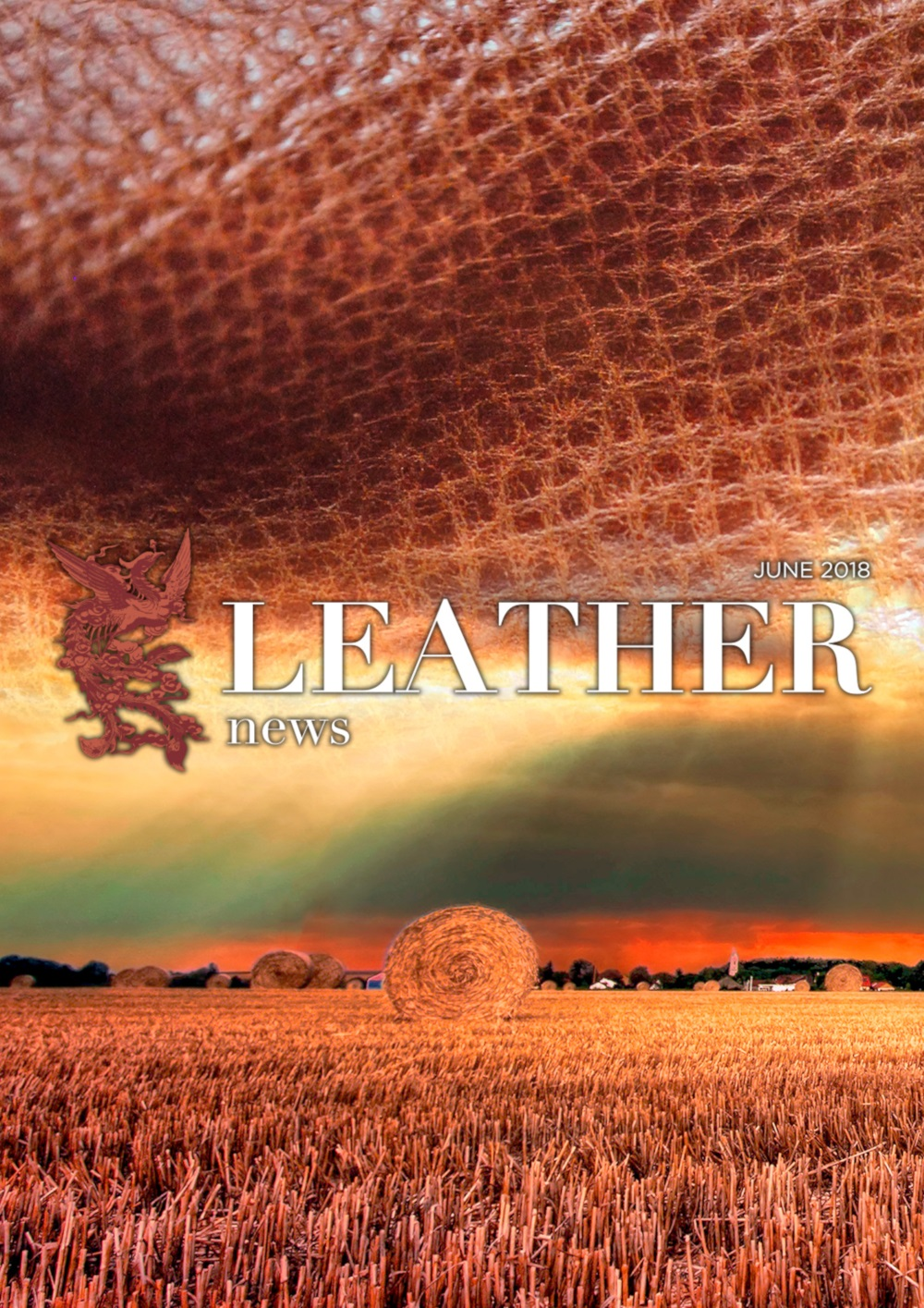 anteprima leather-news JUNE2018